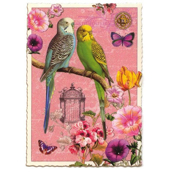 Pink Parakeets Collage Large Postcard ~ Germany