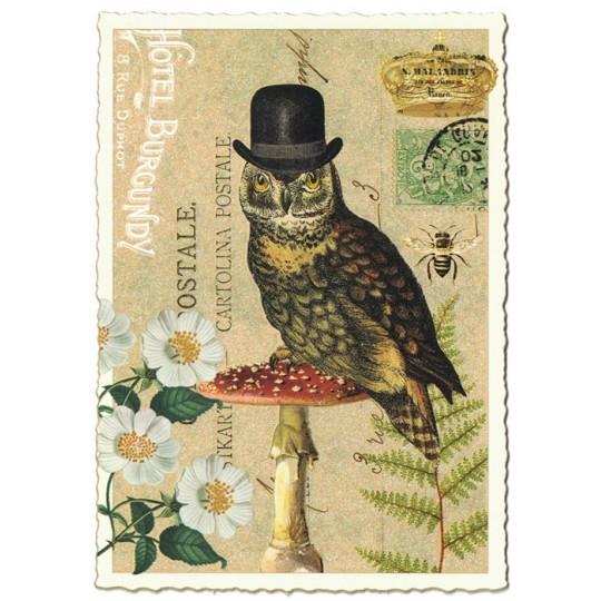 Large Dapper Owl Collage Postcard ~ Germany