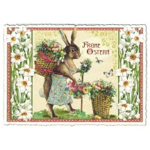 Large Bunny with Daffodils Easter Postcard ~ Germany