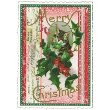 Christmas Kitten Large Postcard ~ Germany
