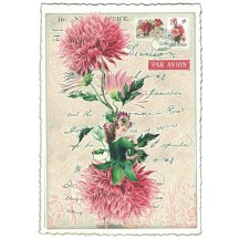 Chrysanthemum Flower Girl Collage Postcard ~ Germany
