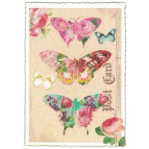 Butterfly Collage Postcard ~ Germany