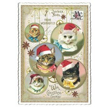 Festive Christmas Cats Postcard ~ Germany