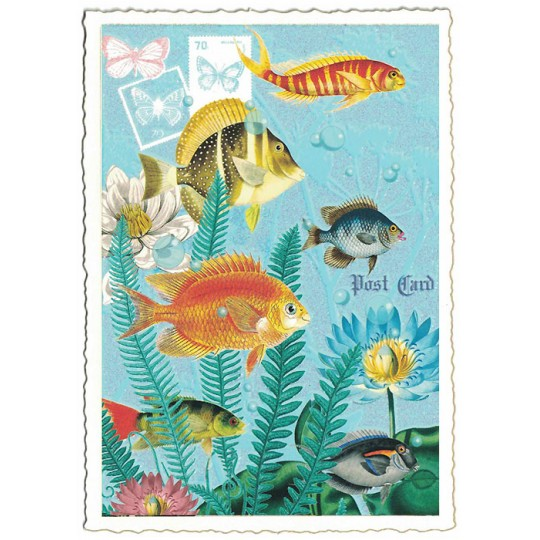 Fish Collage Postcard ~ Germany