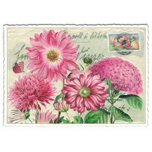 Pink Flowers Collage Postcard ~ Germany