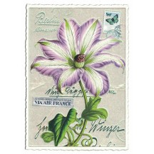 Purple Passion Flower Collage Postcard ~ Germany