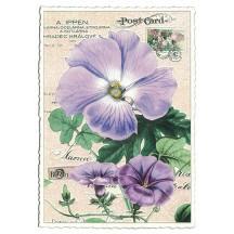 Purple Morning Glory Collage Postcard ~ Germany