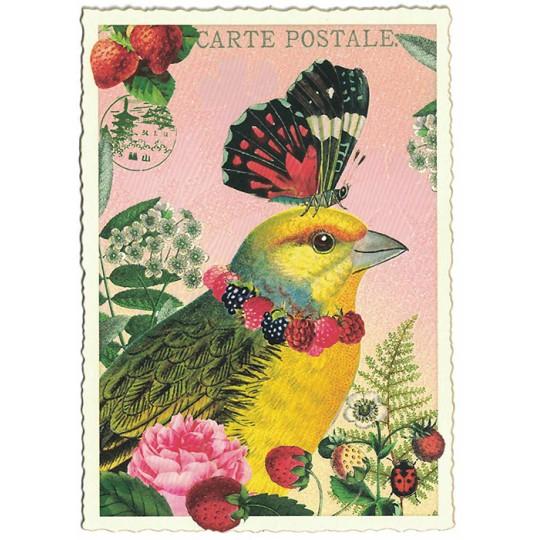 Whimsical Parakeet Glittered Postcard ~ Germany