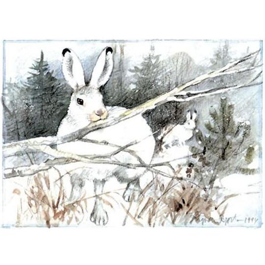 Snow Bunny Christmas Postcard ~ Sweden