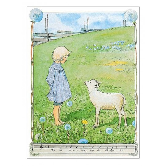 Meadow Lamb Postcard ~ Sweden