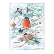 Christmas Birds Postcard ~ Sweden