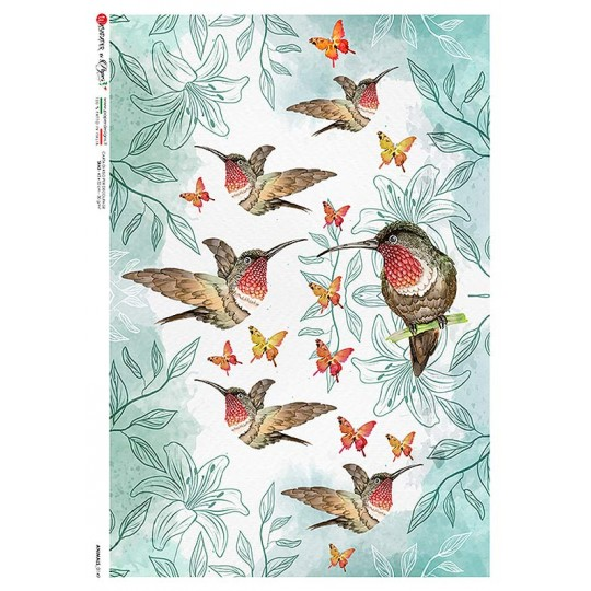 Hummingbirds and Flowers Rice Paper Decoupage Sheet ~ Italy