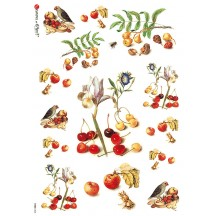 Cherries and Birds Rice Paper Decoupage Sheet ~ Italy