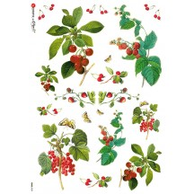 Cherries and Berries Rice Paper Decoupage Sheet ~ Italy