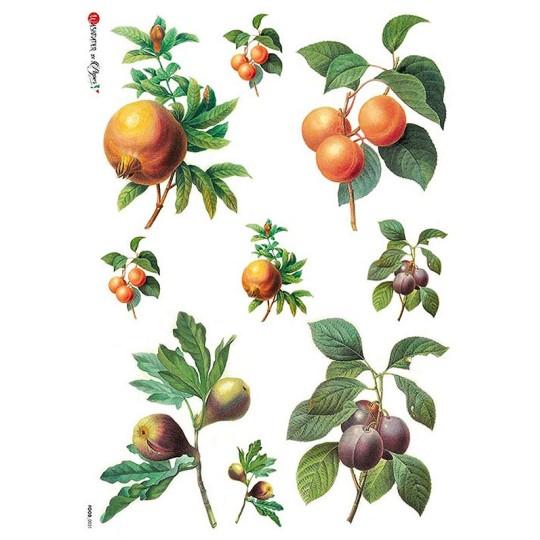 Stone Fruits Rice Paper Decoupage Sheet ~ Italy