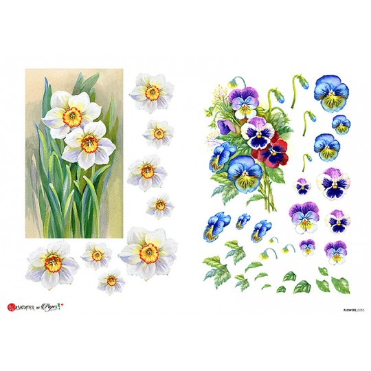 Pansy and Narcissus Floral Rice Paper Decoupage Sheet ~ Italy