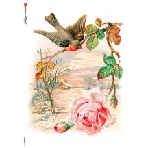Sparrow and Rose Rice Paper Decoupage Sheet ~ Italy