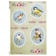 Springtime Birds Rice Paper Decoupage Sheet ~ Italy