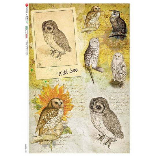 Owl Collage Ephemera Rice Paper Decoupage Sheet ~ Italy
