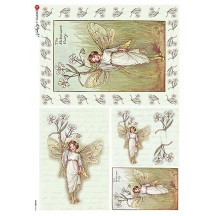 The Stitchwort Fairy Flower Fairies Rice Paper Decoupage Sheet ~ Italy