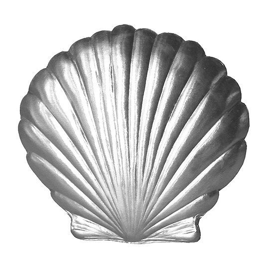 Extra Large SIlver Dresden Scallop Sea Shell ~ 2