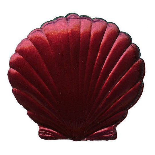 Extra Large Burgundy Dresden Scallop Sea Shell ~ 2