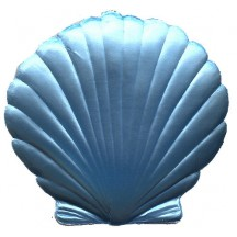 Extra Large Light Blue Dresden Scallop Sea Shell ~ 2