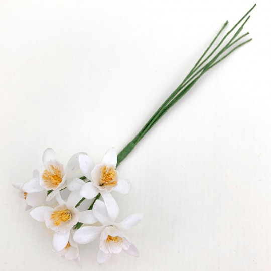 6  White Orange Blossoms ~ 1""