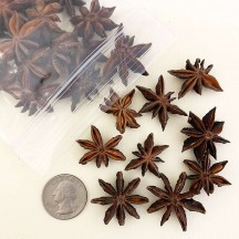 Dried Star Anise for Spice Bouquets and Christmas Crafting ~ 25 piece Bag