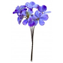 Bundle of 6 Velvet Violets ~ Czech Republic ~ Blue Ombre