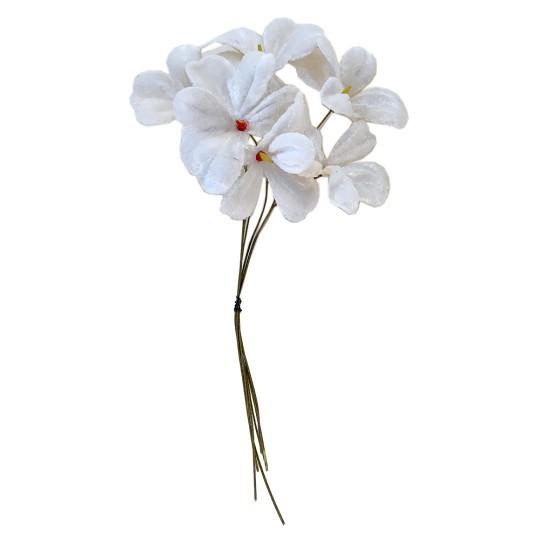 Bundle of 6 Velvet Violets ~ Czech Republic ~ White