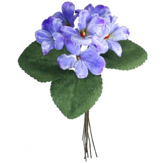 Bouquet of 6 Pale Blue Ombre Violets ~ Czech Republic