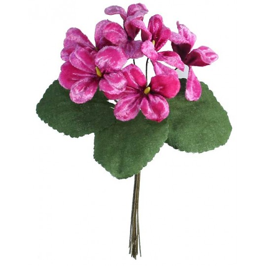 Bouquet of 6 Deep PInk Ombre Violets ~ Czech Republic