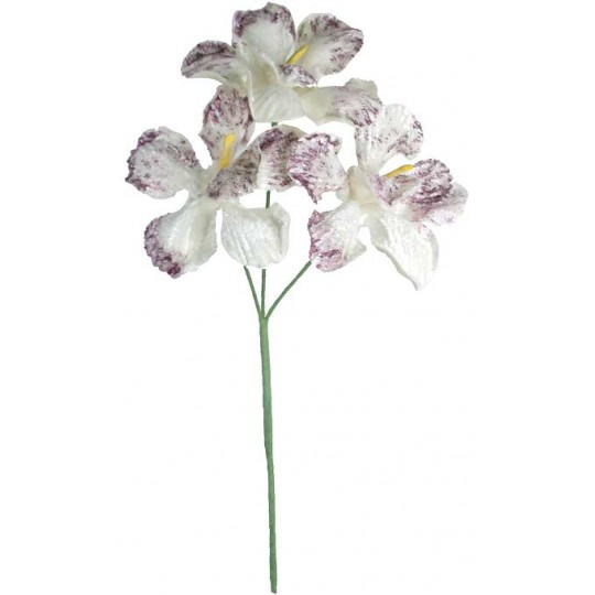 Spray of 3 White and Purple Velvet Orchids ~ Czech Republic