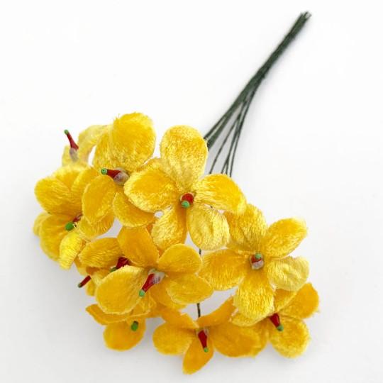 Bouquet of 12 Yellow Velvet Forget Me Nots ~ Czech Republic