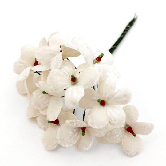 Bouquet of 12 White Velvet Forget Me Nots ~ Czech Republic