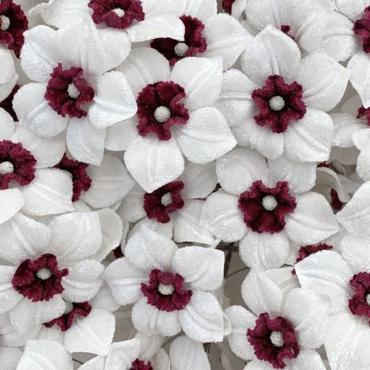 5 Velvet Fabric Narcissus ~ Czech Republic ~ White + Burgundy