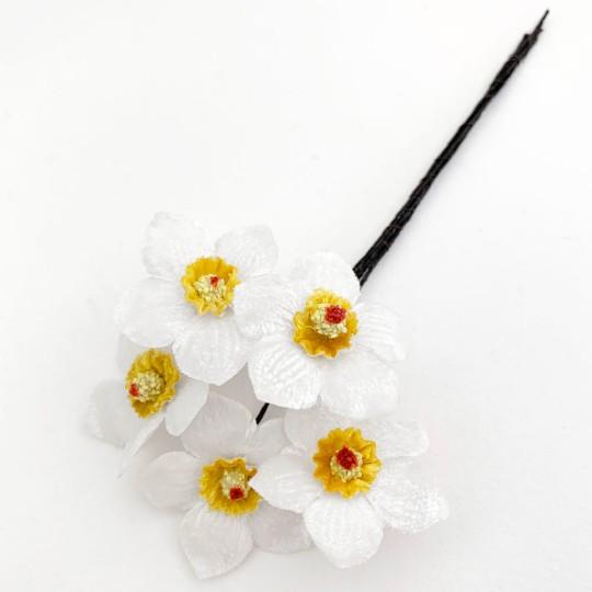 5 White and Yellow Velvet Narcissus ~ Czech Republic