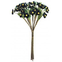 Bundle of Petite Velvet Forget me Nots ~ Czech Republic ~ Black