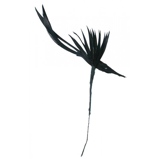 Black Millinery Feather Bird  ~ Vintage Japan