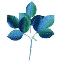 Sprig of Blue Ombre Velvet Rose Leaves ~ Vintage Japan
