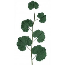 Spray of Dark Green Silk Geranium Leaves ~ Vintage German