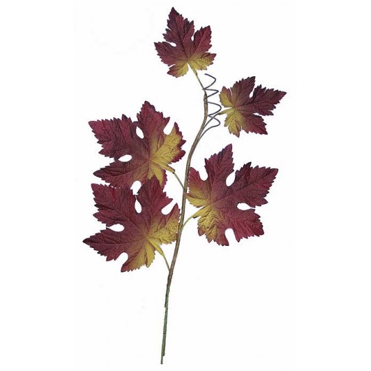 Spray of Ombre Autumn Maple Leaves ~ Vintage German