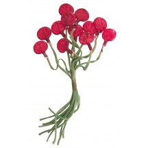 Bundle of 12 Stems with Clear Red Glass Fruit ~ Vintage Germany