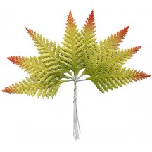 Set of 8 Paper Autumn Ombre Fern Fronds ~ Czech Repub.