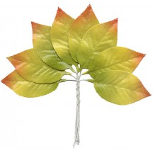 Set of 8 Paper Autumn Ombre Leaves ~ Czech Repub.