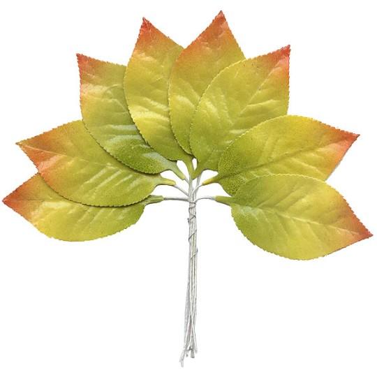 Set of 8 Paper Autumn Ombre Leaves ~ Czech Repub.