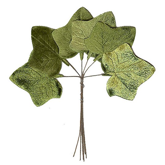 Set of 6 Green Velvet Ivy Leaves ~ Czech Repub.