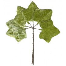 Set of 6 Light Green Velvet Ivy Leaves ~ Czech Repub.