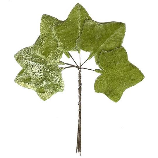 Set of 6 Light Green Velvet Ivy Leaves ~ Czech Repub.